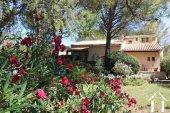 Propriété avec annexes et piscine au cœur du Languedoc